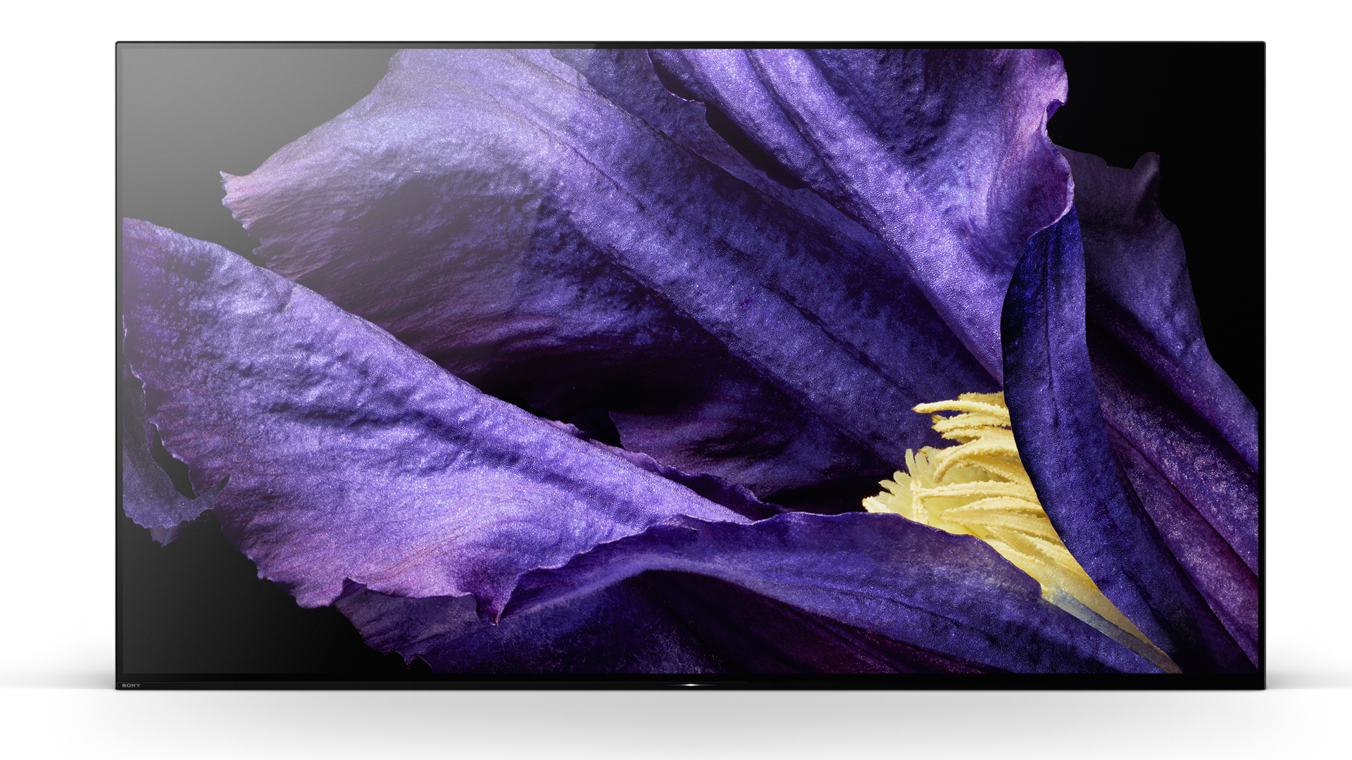 An Image of the Sony A9F Master Series OLED