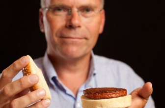In Depth: Food for thought: would you eat a lab-made burger if it could save the world?