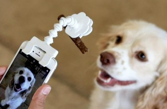 This Smartphone Treat Holder Helps You Shoot Pet Portraits