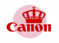 Canon #1 in Both DSLR and Mirrorless Sales in Japan in 2018