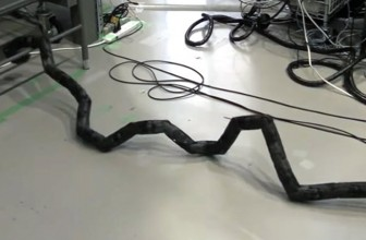 Scientists create ladder-climbing robot snake